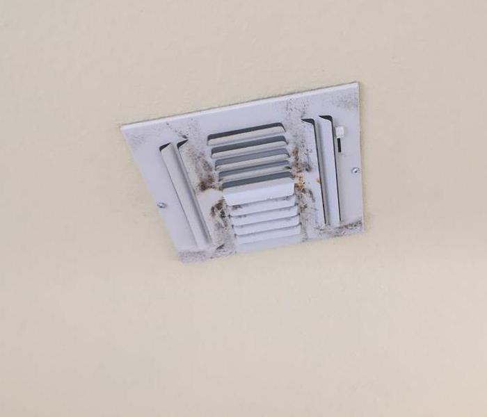 Air conditioning vent with mold