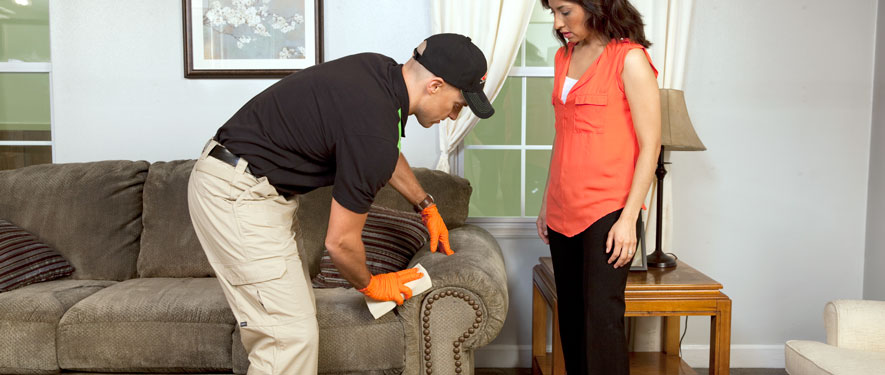 Corpus Christi, TX carpet upholstery cleaning